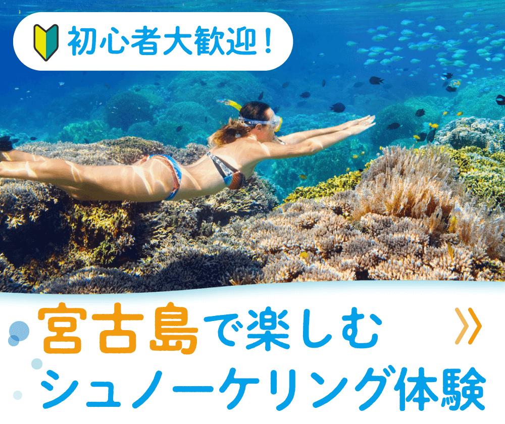 浮人プラン紹介バナー